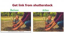get link shutterstock